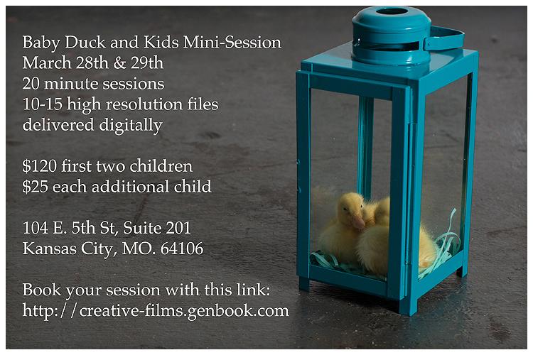 ducks2014